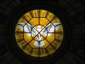 duif Berliner Dom